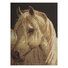 Wild Horse Stretched Wall Tapestry