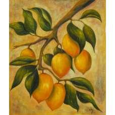 Citrus Canvas Oil Painting