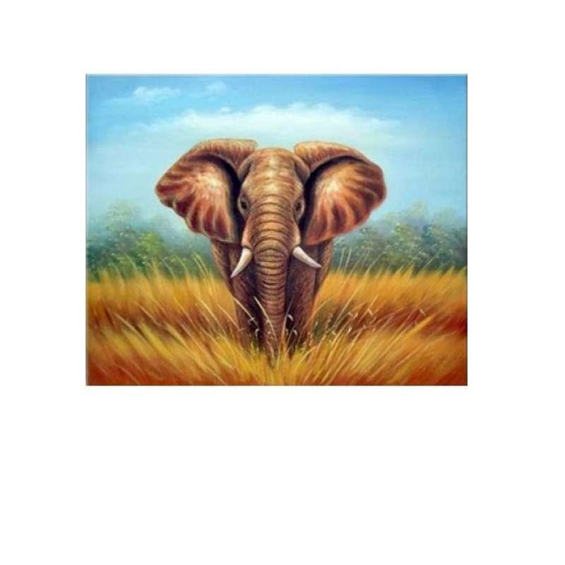 African Elephant Canvas Art