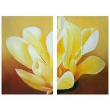 Sunlit Blossom Canvas Art