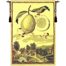 Lemon De Genova European Tapestry
