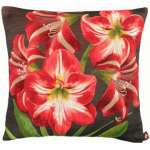 Amaryllis 5 Flowers Dark Background European Cushion