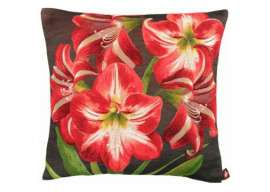Amaryllis 5 Flowers Dark Background European Cushion