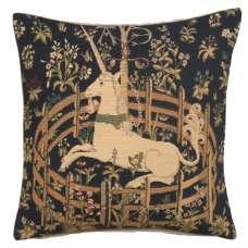 Captive Unicorn European Cushion Covers
