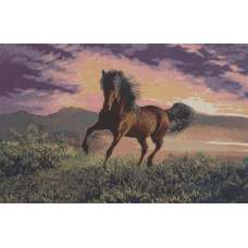 Gallop Stretched Wall Tapestry